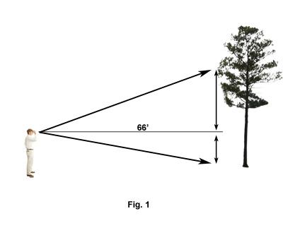 Using a Clinometer