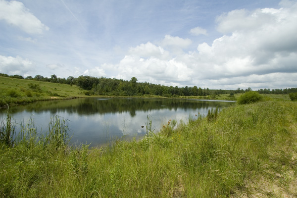 So you want to build a pond let s begin with the basics for 1 acre pond design